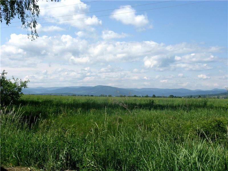 2009 р. Вид з Липованів на Буковинські Карпати