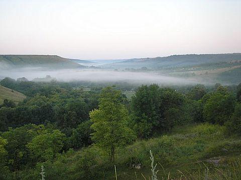 Вранці над річкою стелиться туман