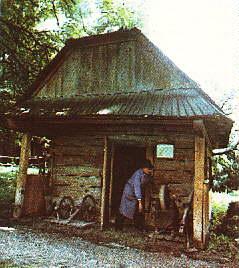 1986 р. Загальний вигляд Джерело: carpatho-rusyn.org