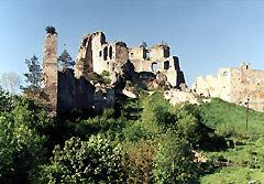 Замок Кам'янець