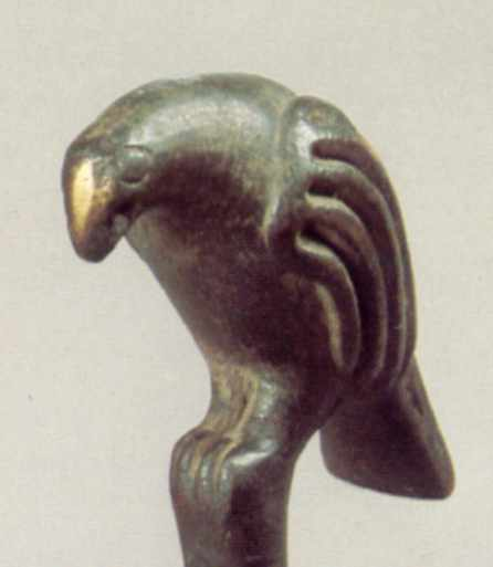 Середній птах