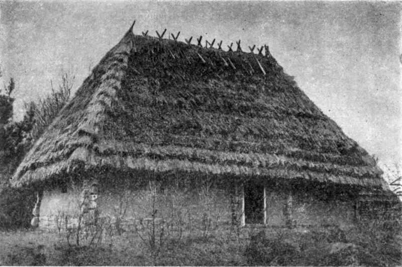 Трикамерний будинок