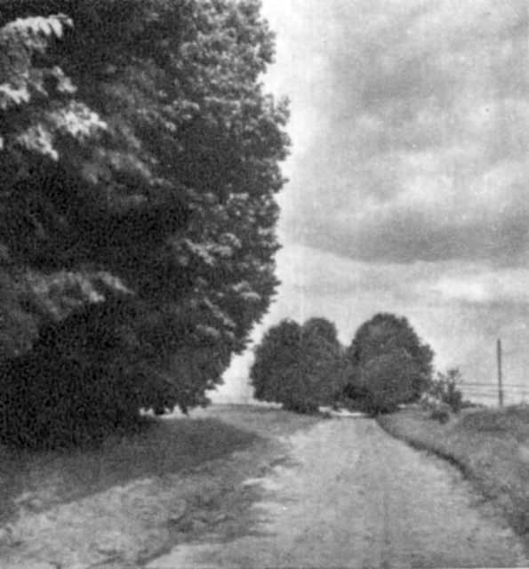 Шлях до села