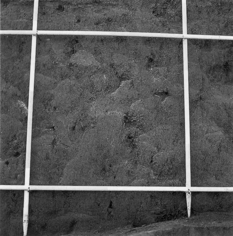 Систематичне дослідження структури дернової засипки. 1981 р. Фото Р.Ролле
