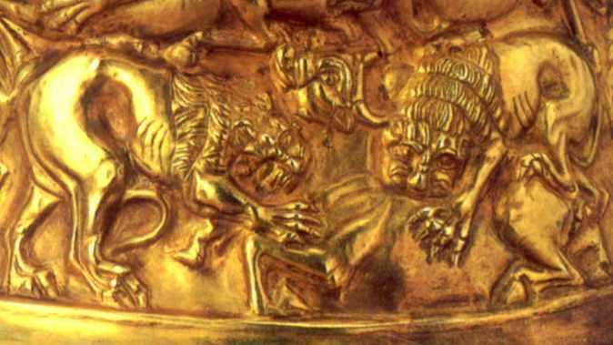 Ярус 4: два леви терзають бика