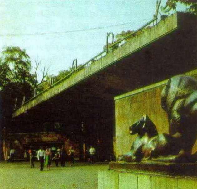 Зоологічний парк (№ 32)
