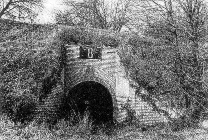 Лисогірське укріплення