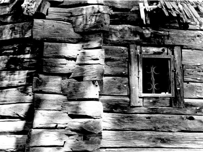 1988 р. Фрагмент зрубу