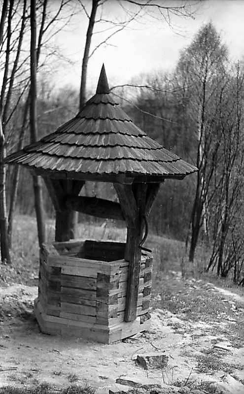 1976 р. Криниця