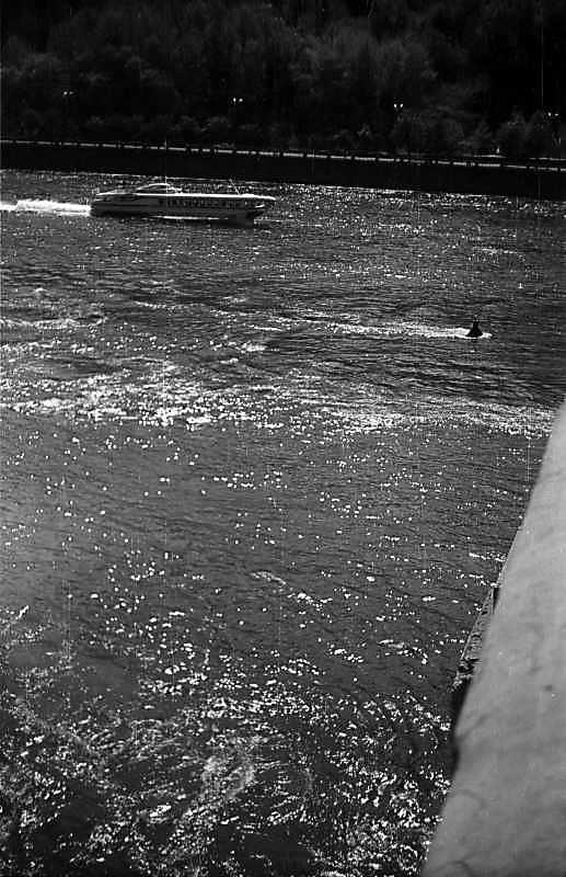 """1976 р. Теплохід """"Ракета"""" на Дніпрі. Вигляд з пішохідного моста"""