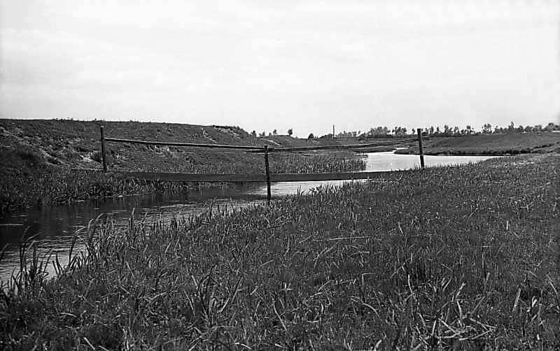 1976 р. Вид на р.Збитенька