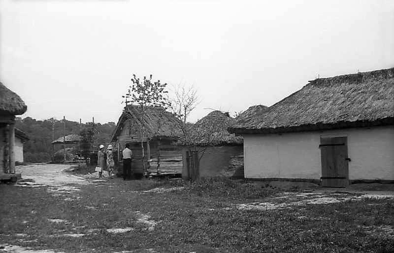 1977 р. Загальний вигляд двору (оборіг, саж, курник, повітка)