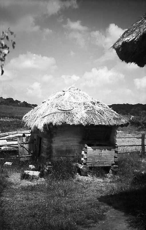 1977 р. Загальний вигляд з боку двора
