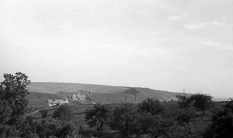 1977 р. Краєвид по дорозі з Бережан до Рогатина