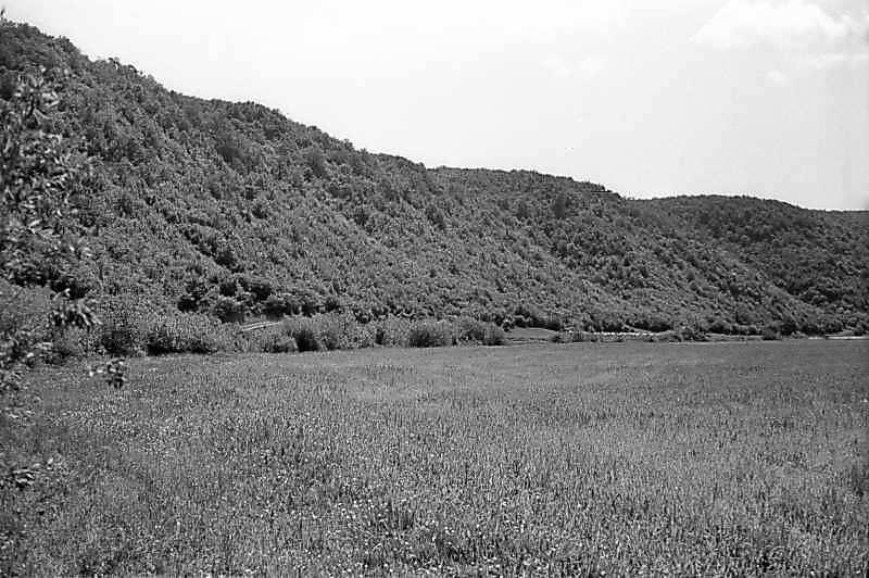 1978 р. Схил лівого берега Збруча нижче с.Милівці. Вигляд із заходу