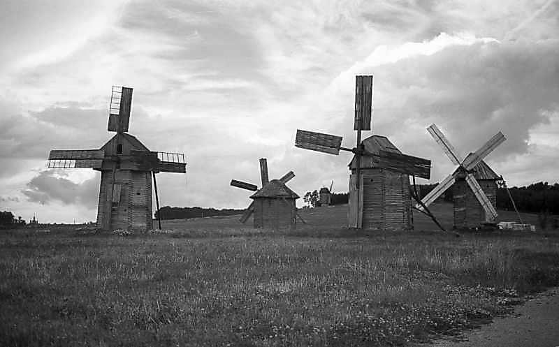 1979 р. Загальний вигляд групи вітряків зі сходу