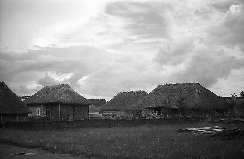 1979 р. Загальний вигляд з боку дороги (фрагмент повітки, хата, клуня)
