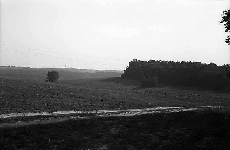 1980 р. Краєвид біля Пирогова