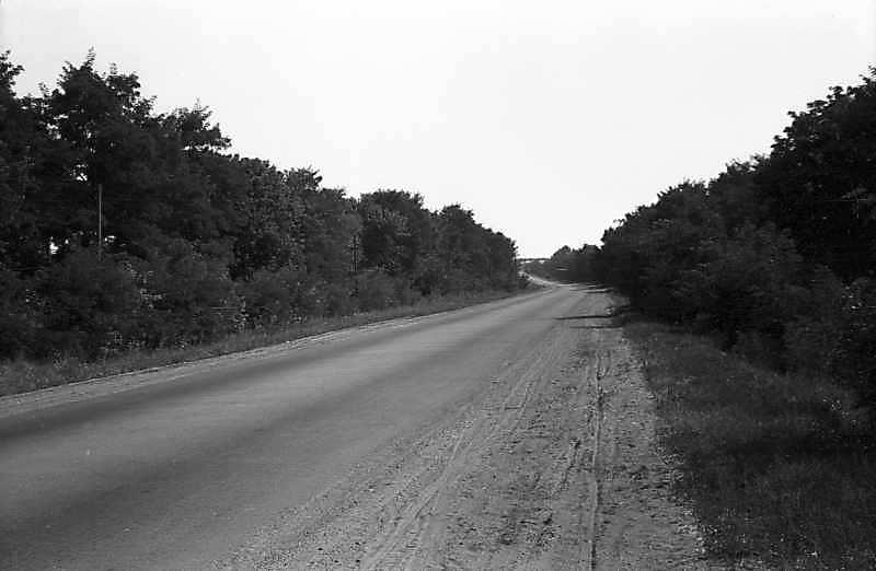 1981 р. Дорога біля Кіровограда