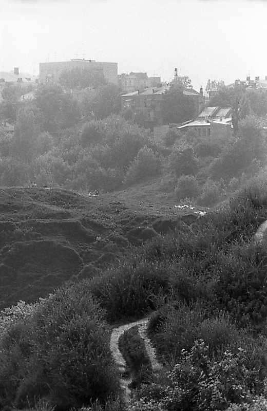 1983 р. Фрагмент Замкової гори