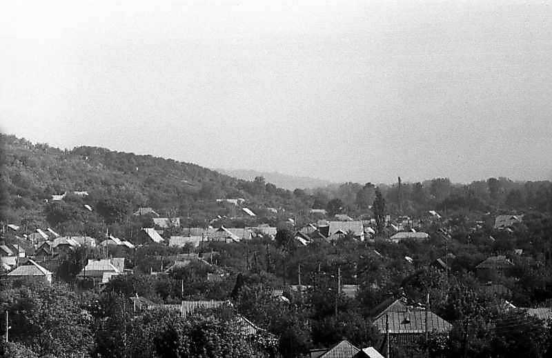 1983 р. Краєвид міста з гори біля монастиря