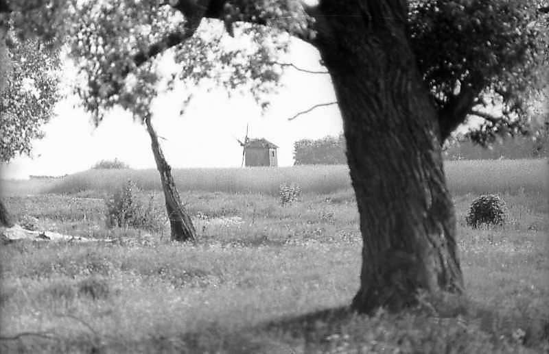 1983 р. Вітряк