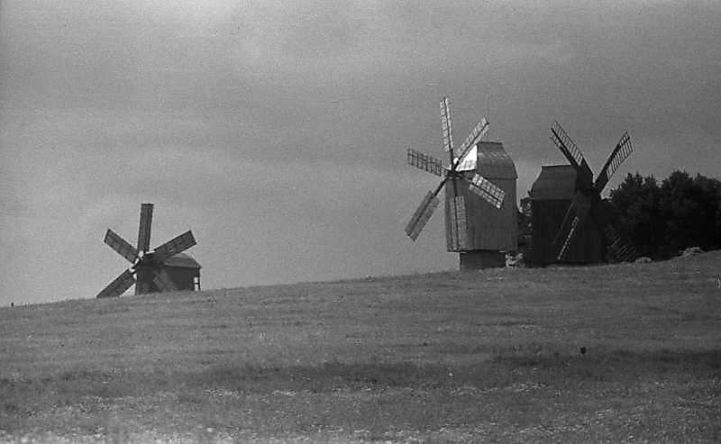 1984 р. Загальний вигляд з північного сходу