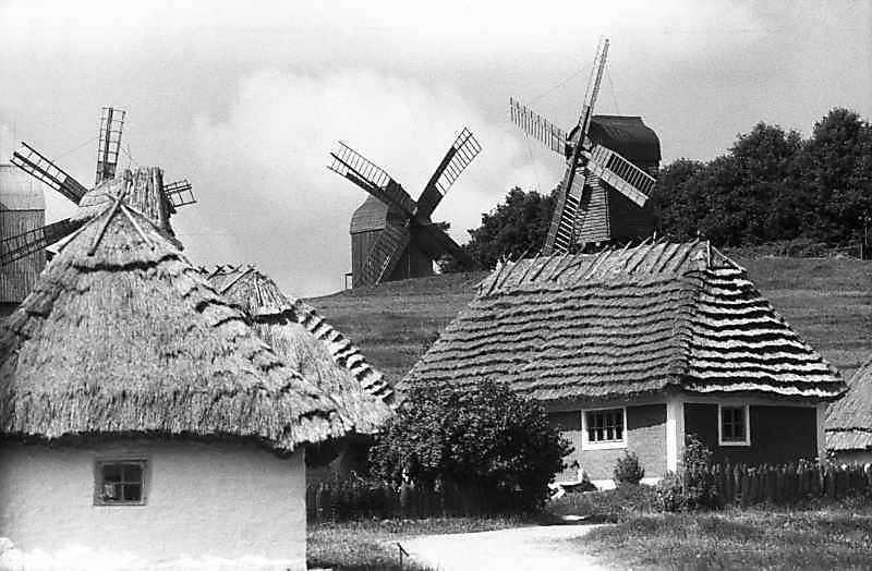 1985 р. Корчма і хата з Кадієвець на тлі гірки вітряків
