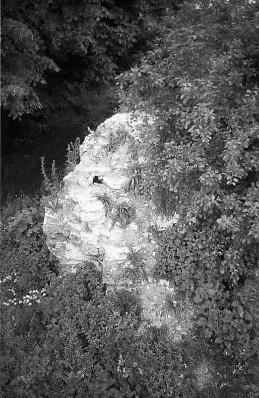 1988 р. Фрагмент чільного муру