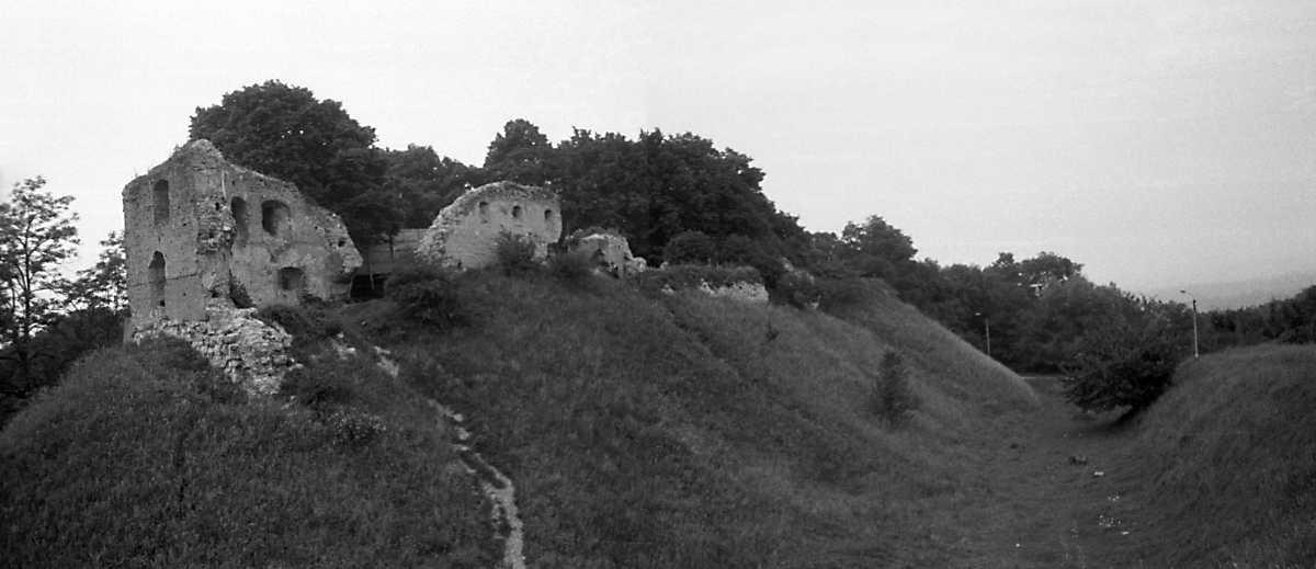 1988 р. Панорама з південного заходу