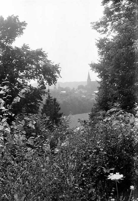 1989 р. Вид на церкву та костел у Струсові