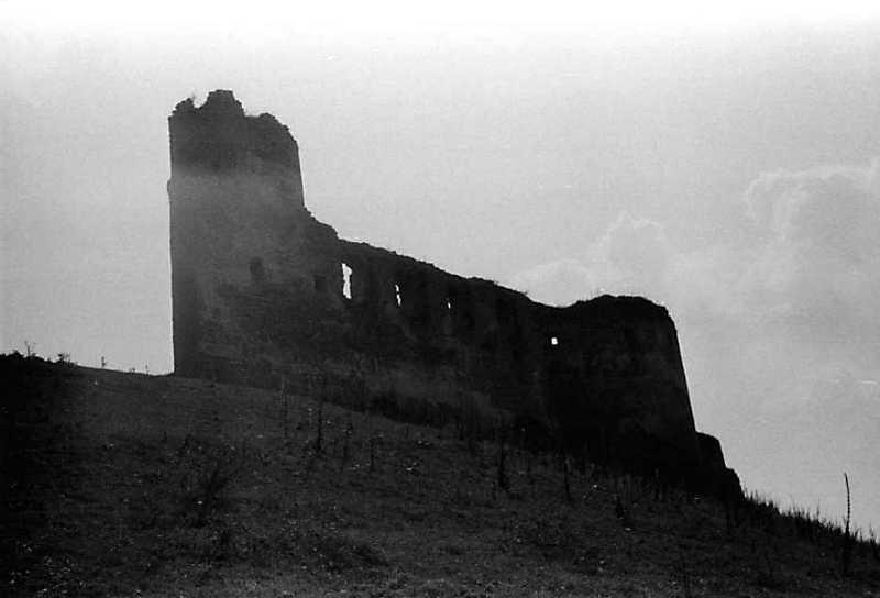 1989 р. Башта 1, мур палацу і башта 14. Вигляд з північного заходу