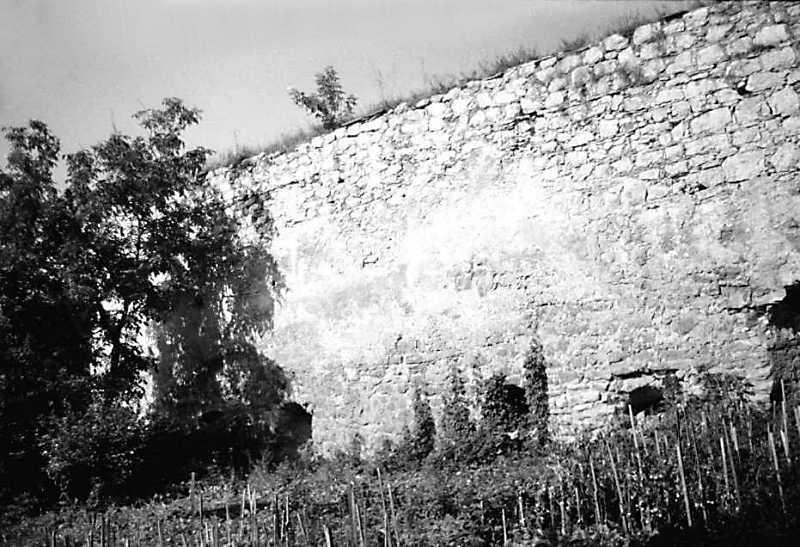 1989 р. Фрагмент східного муру. Вигляд зі сходу