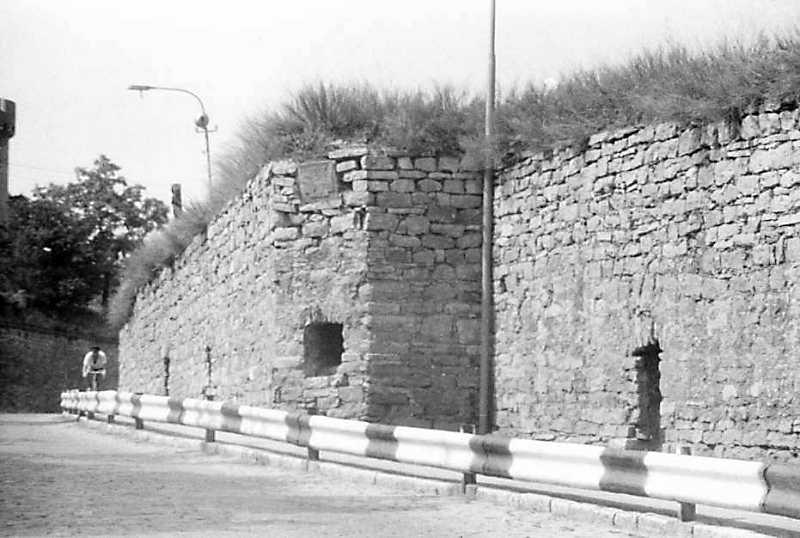 Оборонна стіна над Смотричем біля Старого замку