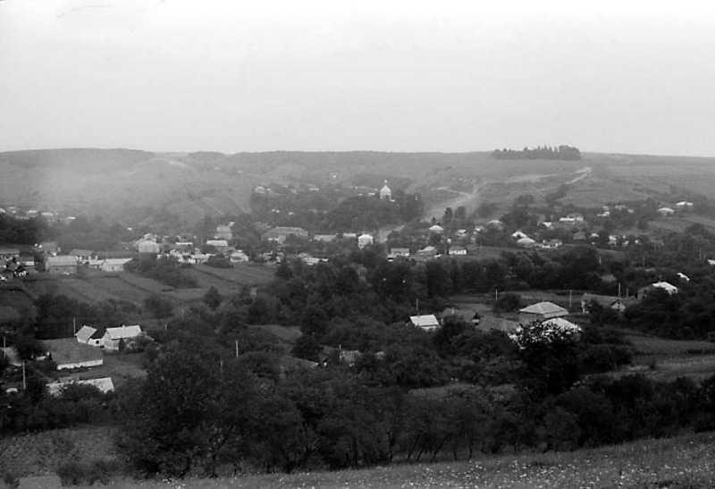 1990 р. Панорама села з півдня
