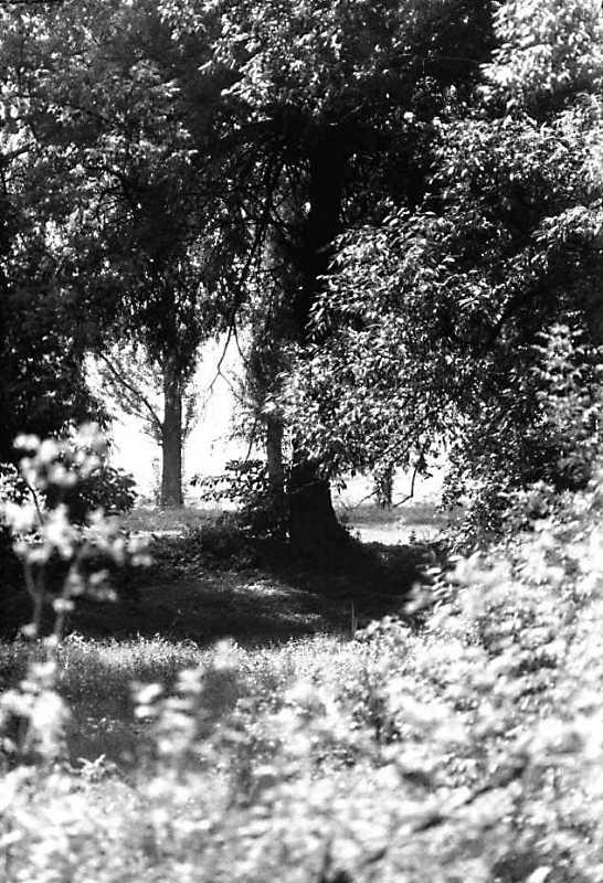 1990 р. Вид на р.Стир в с.Піски