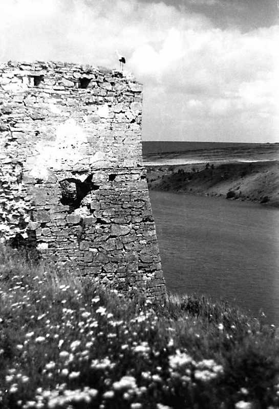 Фрагмент башти на тлі Жванчика (1)