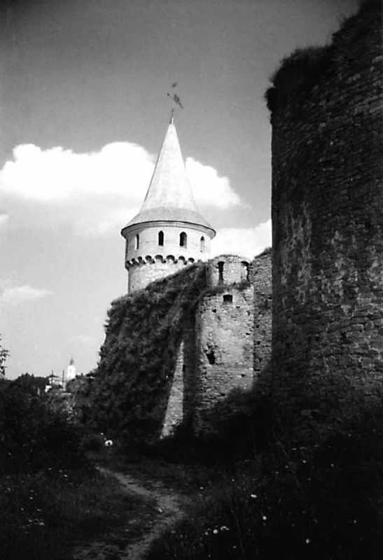 1991 р. Башти Рожанка, Мала Західна, Нова Західна (фрагмент). Вигляд із заходу