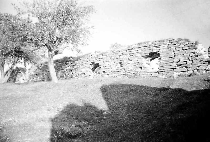 1991 р. Південно-східний мур. Вигляд із заходу, з боку двора
