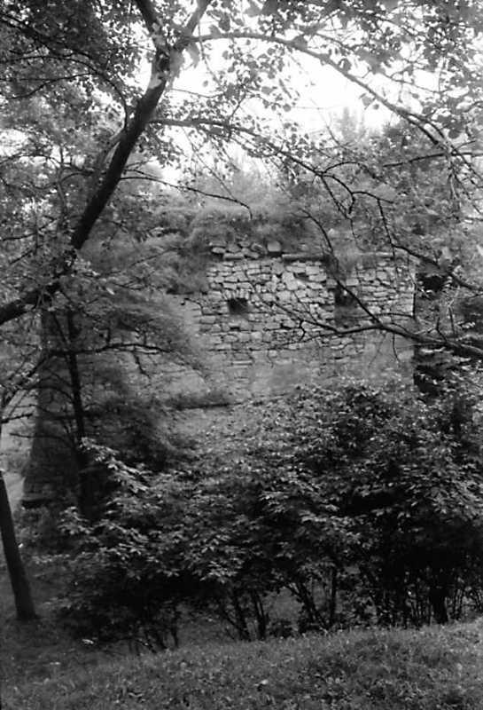 1991 р. Бастіон