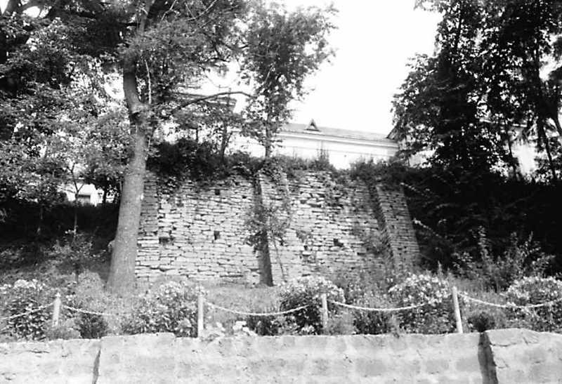 1991 р. Південна підпірна стіна садиби. Вигляд з півдня