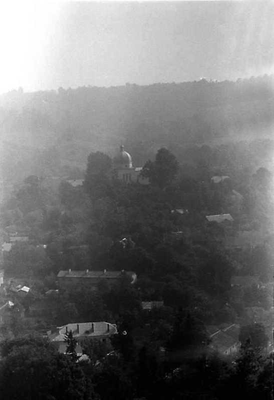 1991 р. Вигляд із Замкової гори