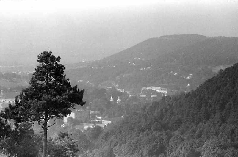 1991 р. Вид з вершини Замкової гори на Дівочу гору