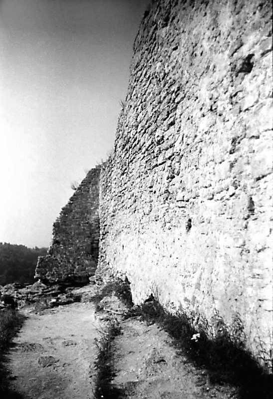 1991 р. Фрагмент західної башти та західного муру. Вигляд з півдня