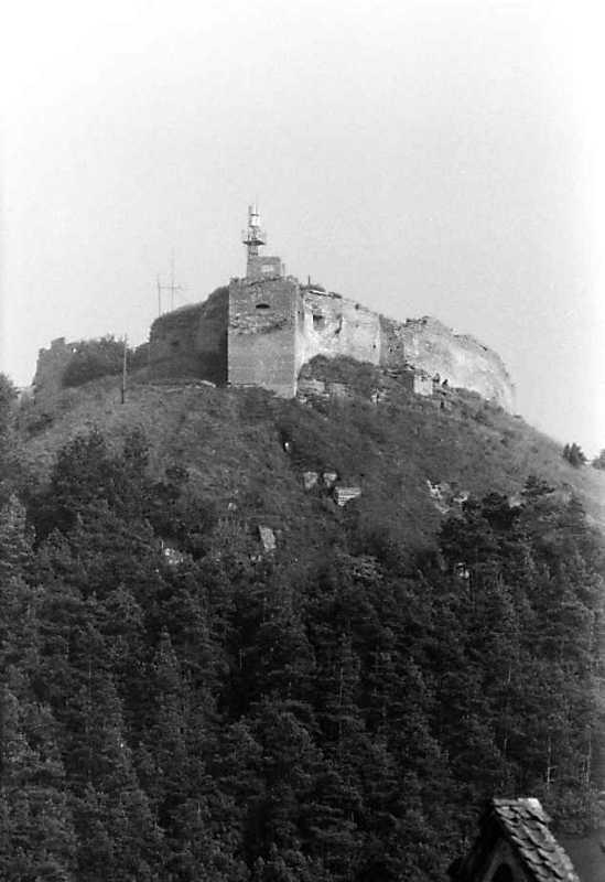 1991 р. Західна башта і західний мур. Вигляд із заходу