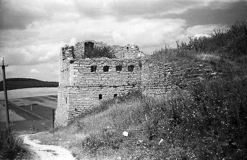 1995 р. Західна башта і південно-західний мур. Вигляд з південного сходу