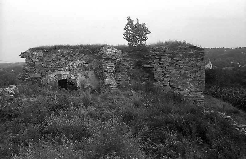 1996 р. Надбрамна башта. Вигляд з боку муру