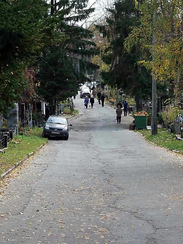 2007 р. Перспектива головної алеї між полями 8а і 43а