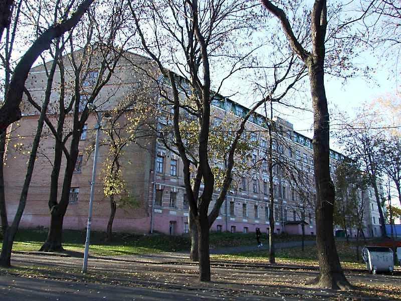 2008 р. Загальний вигляд з боку Володимирської гірки