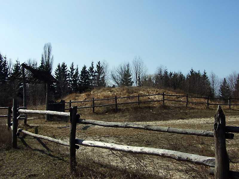 2011 р. Загальний вигляд з північного сходу